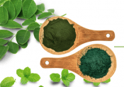 Best Green Juice Powder Supplement? where can i buy organifi ?